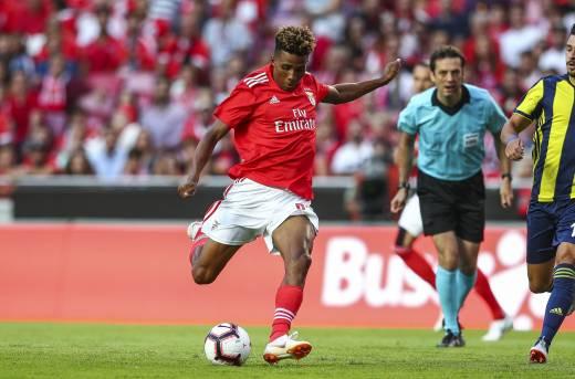 Fútbol: Fernandes, primer fichaje de Tottenham en la era Mourinho
